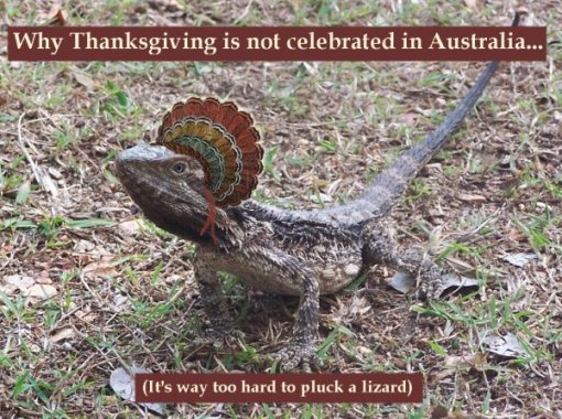 thanksgivinglizard-2478