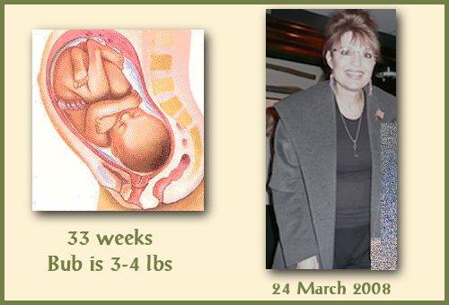 fetusat33wks