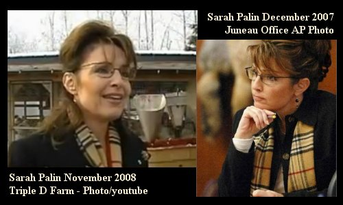 Mea Culpa! Seems Sarah owned this scarf a full year before Wardrobe Gate