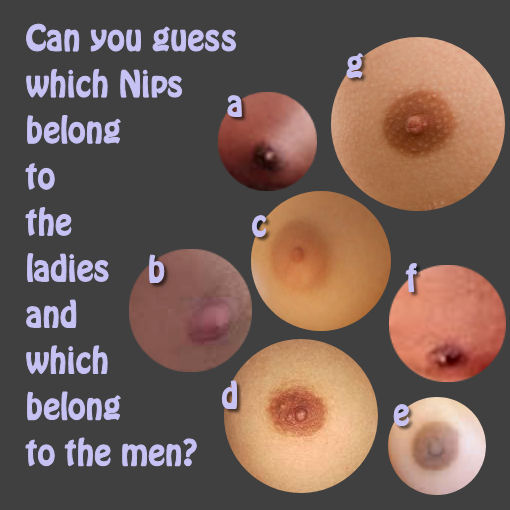 Which Nipples are which
